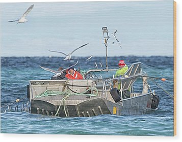 Wood Print featuring the photograph Flying Fish by Randy Hall