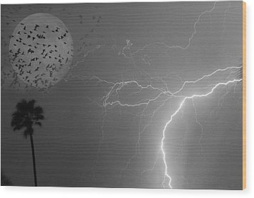 Flying From The Storm Bw Wood Print by James BO  Insogna