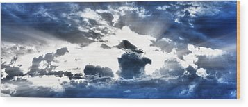 Wood Print featuring the photograph Flying High by Anthony Rego