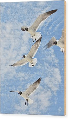 Wood Print featuring the photograph Flying High by Jan Amiss Photography