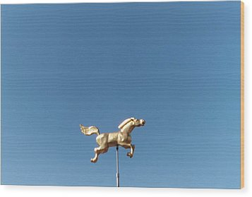 Flying Horse Chattanooga Wood Print by Jake Hartz