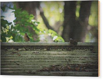 Flying Lessons Wood Print by Mandy Shupp