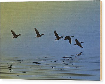 Flying Low Wood Print by Bill Cannon