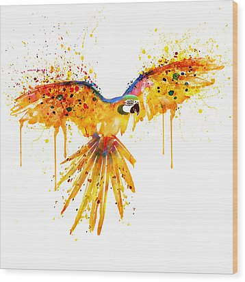 Flying Parrot Watercolor Wood Print