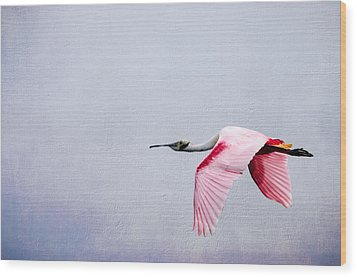 Flying Pretty - Roseate Spoonbill Wood Print