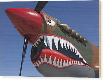 Flying Tiger Plane Wood Print by Garry Gay