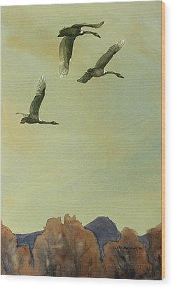 Flyover Wood Print by Kris Parins