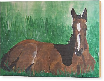 Wood Print featuring the painting Foal by Krista Ouellette