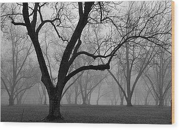 Fog 2 Wood Print by Beverly Hammond