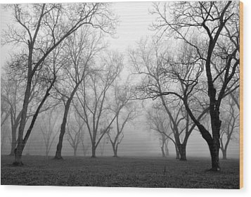 Fog 3 Wood Print by Beverly Hammond