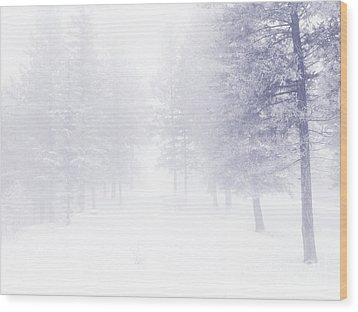 Fog And Snow Wood Print by Tara Turner