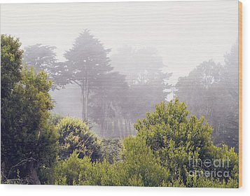 Wood Print featuring the photograph Fog At Lands End by Cindy Garber Iverson