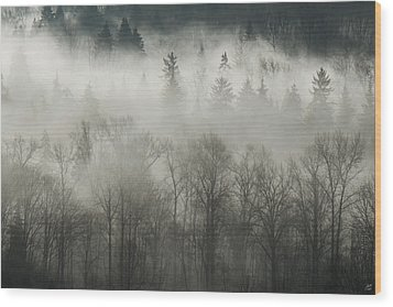 Wood Print featuring the photograph Fog Enshrouded Forest by Lisa Knechtel