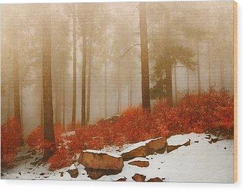 Fog II Wood Print
