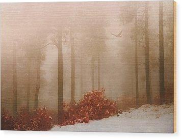 Fog IIi Wood Print
