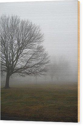 Fog Wood Print by John Scates