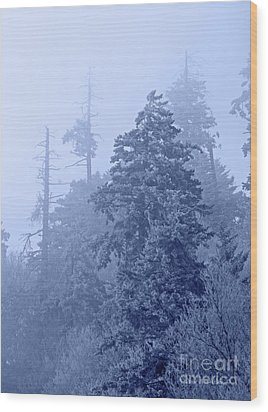 Wood Print featuring the photograph Fog On The Mountain by John Stephens