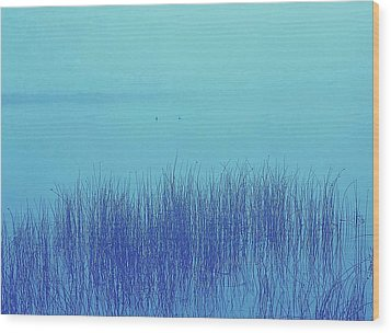 Wood Print featuring the photograph Fog Reeds by Laurie Stewart