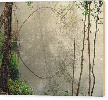 Fog Reflections Wood Print by Dottie Dees