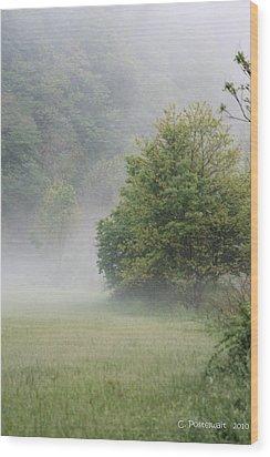 Fog Rising Wood Print