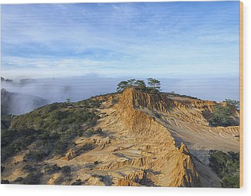 Fog Rolling In Wood Print by Joseph S Giacalone