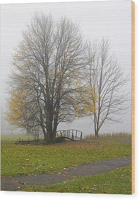 Wood Print featuring the photograph Foggy Crossing by Alan Raasch