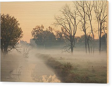 Foggy Fall Morning On Gary Avenue Wood Print