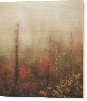 Foggy Fall On The Parkway Wood Print