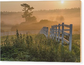 Foggy Fence Wood Print