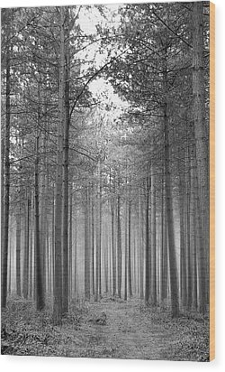 Foggy Forest Wood Print by Svetlana Sewell