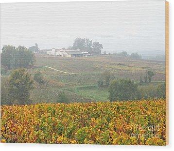 Foggy French Vineyard Wood Print