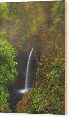 Foggy Metlako Falls Wood Print by David Gn