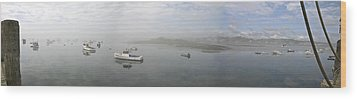Foggy Morning At Cape Porpoise Wood Print by David Bishop