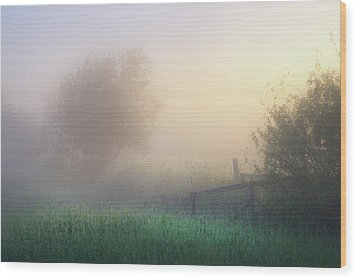 Wood Print featuring the photograph Foggy Morning by Dan Jurak