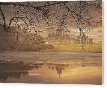 Wood Print featuring the photograph Foggy Morning by Gouzel -
