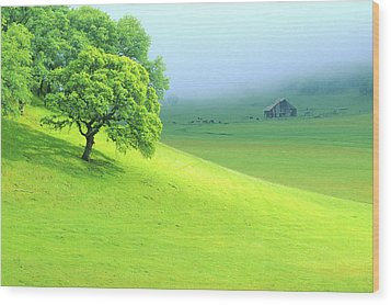 Foggy Morning In The Valley Wood Print by Eggers Photography
