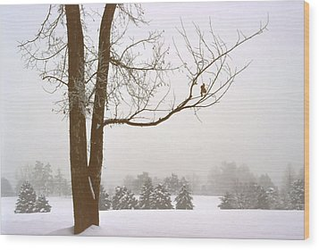 Foggy Morning Landscape 16 Wood Print by Steve Ohlsen