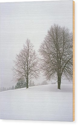 Foggy Morning Landscape 19 Wood Print by Steve Ohlsen