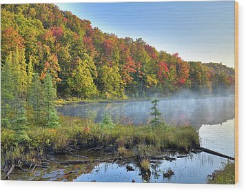 Wood Print featuring the photograph Foggy Morning On The Pond by David Patterson