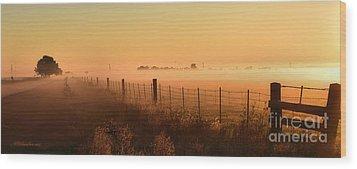 Foggy Sunrise On Hawkins Rd Wood Print