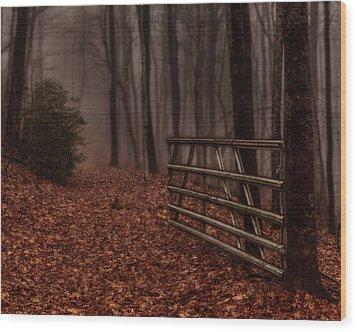 Foggy Trail Wood Print