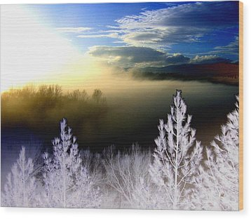 Foggy Winter Sunset Wood Print by Will Borden