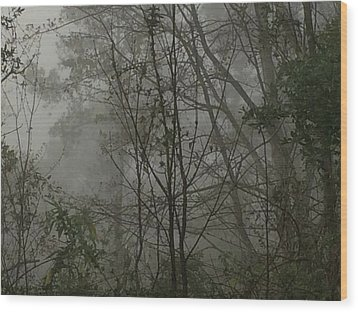 Foggy Woods Photo  Wood Print