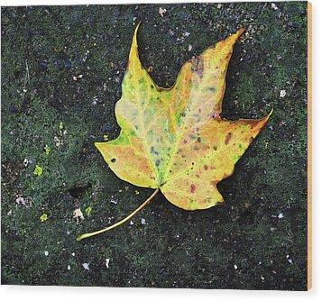 Foliation Wood Print by Tom Druin