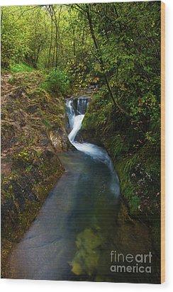 Wood Print featuring the photograph Follow It I by Yuri Santin