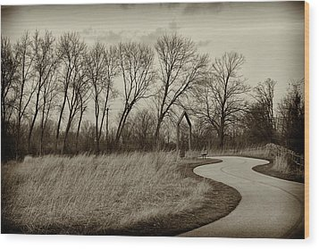 Wood Print featuring the photograph Follow The Path by Elvira Butler