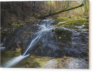Wood Print featuring the photograph Follow The Stream by Yuri Santin