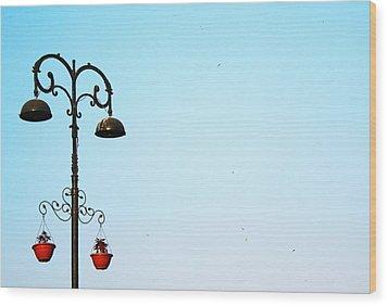 Fond Memories Wood Print by Prakash Ghai