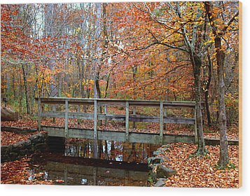 Foot Bridge Wood Print