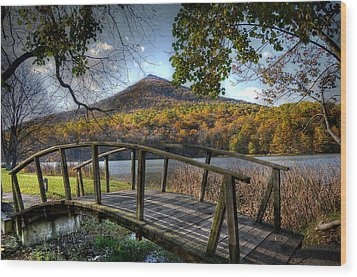 Foot Bridge Wood Print by Todd Hostetter